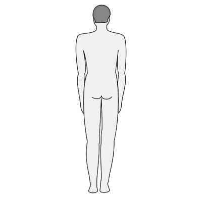 Grey  of a Man Back View PNG Image