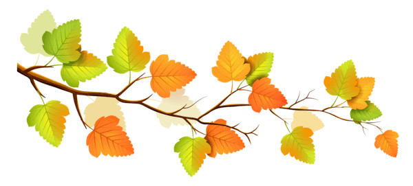 Autumn Branch PNG Image