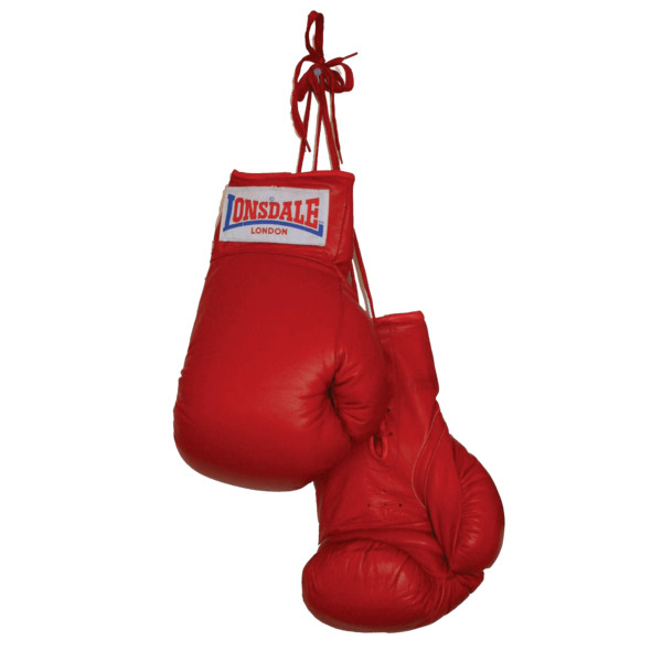 Boxing Gloves Duo PNG Image