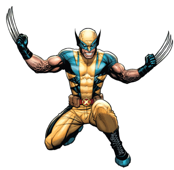 Wolverine  PNG Image