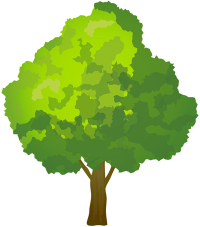 tree  - Download on PNGPX