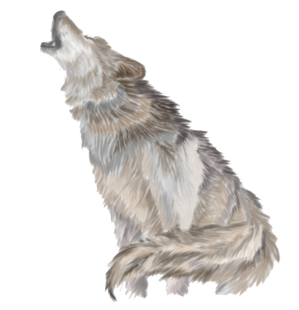 Wolves Howl - Download on PNGPX