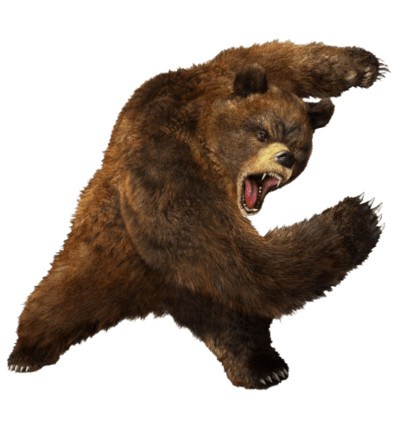 Angry Fighting Bear PNG Image