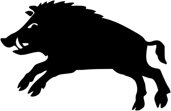 Boar Black and White PNG Image