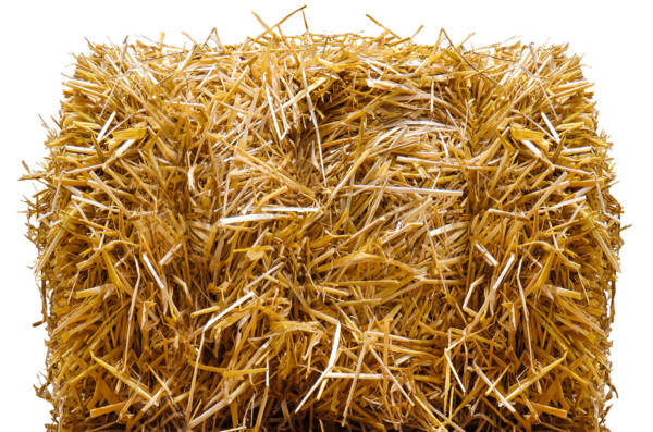 Straw Bale PNG Image