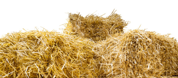 Top Of Straw Bales PNG Image