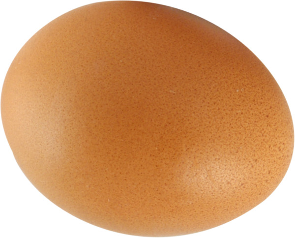 Egg   - Download on PNGPX