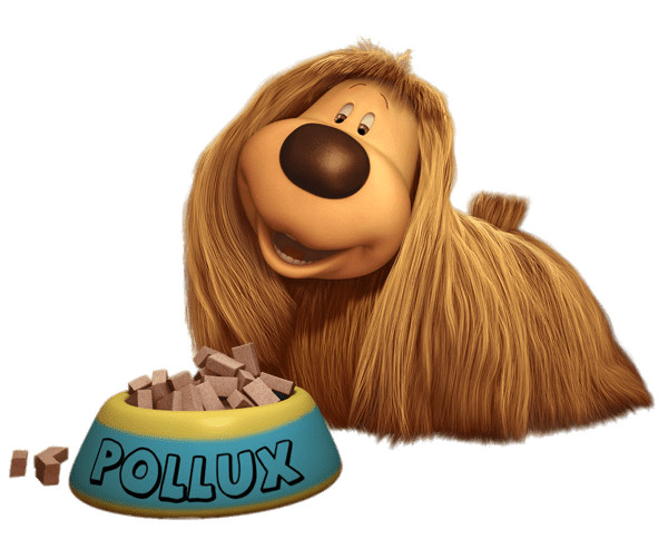 Pollux (Dougal)  Bowl Of Dog Food PNG Image