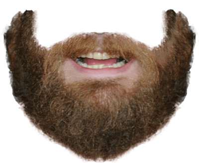 Beard and Mouth PNG Image